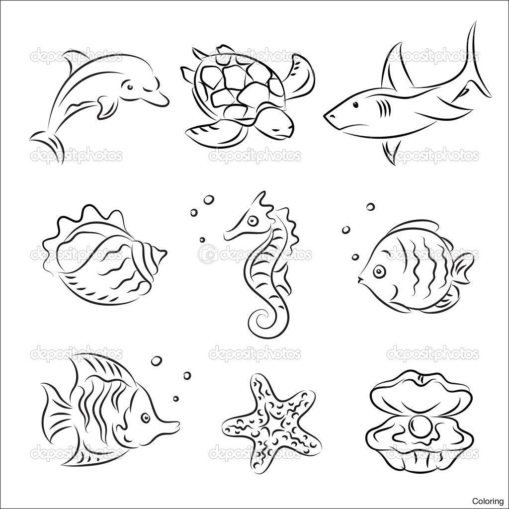 Ocean Animals Drawing At Getdrawings