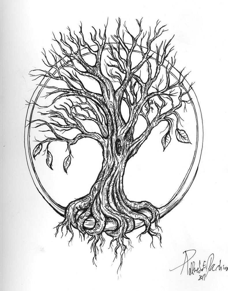 Old tree drawing 33
