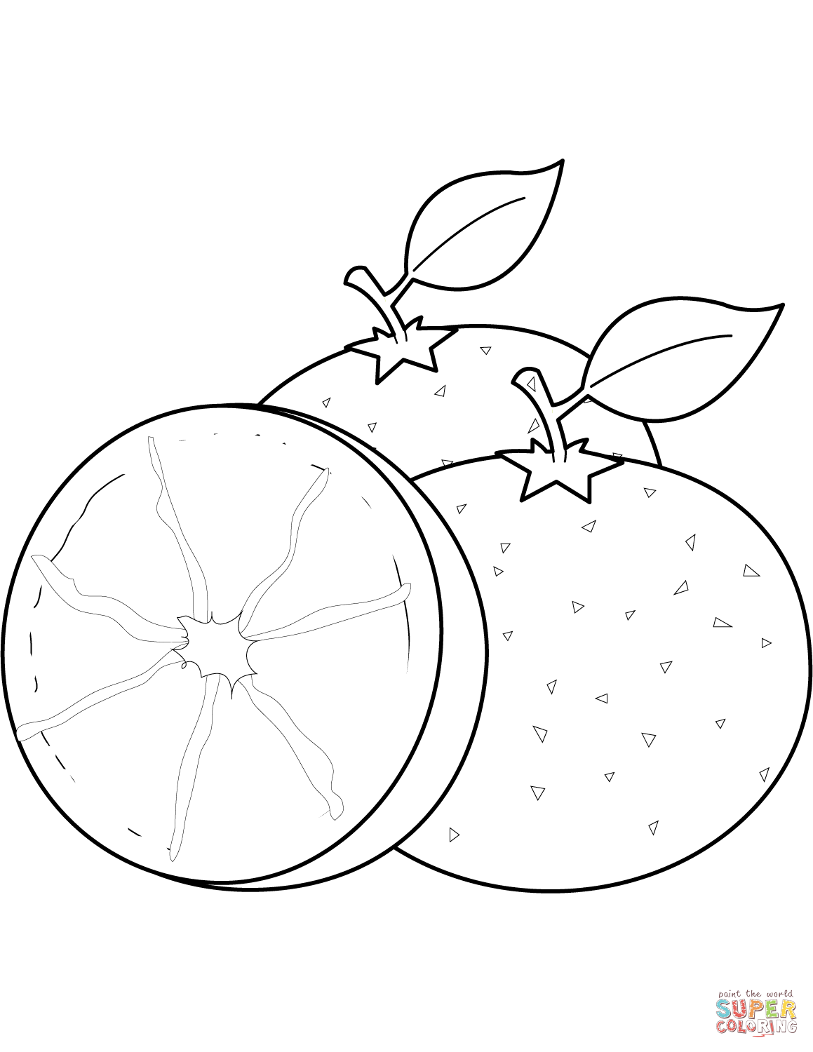 Oranges Drawing At Getdrawings