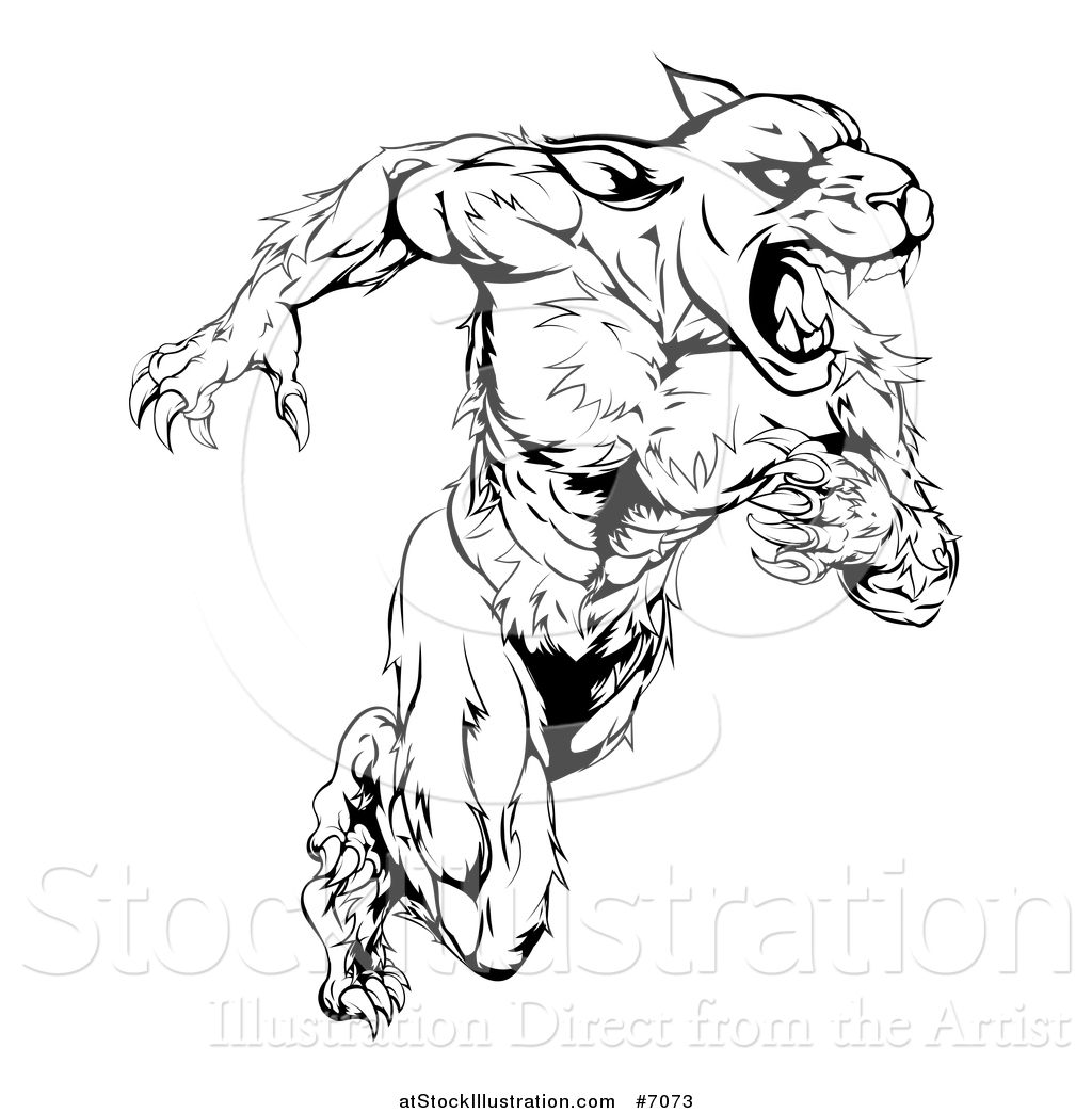 Panther Head Drawing At Getdrawings