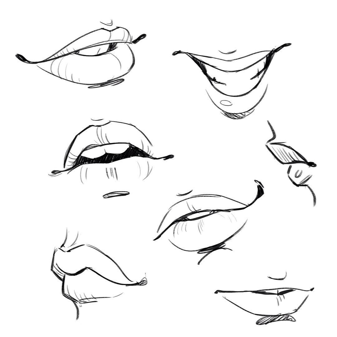 Body parts drawing