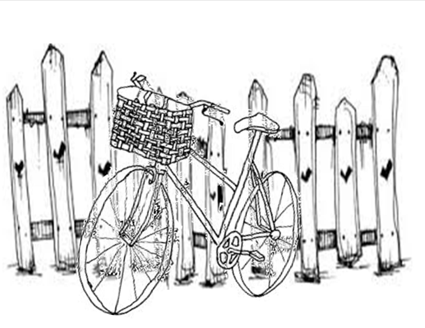 Picket Fence Drawing At Getdrawings