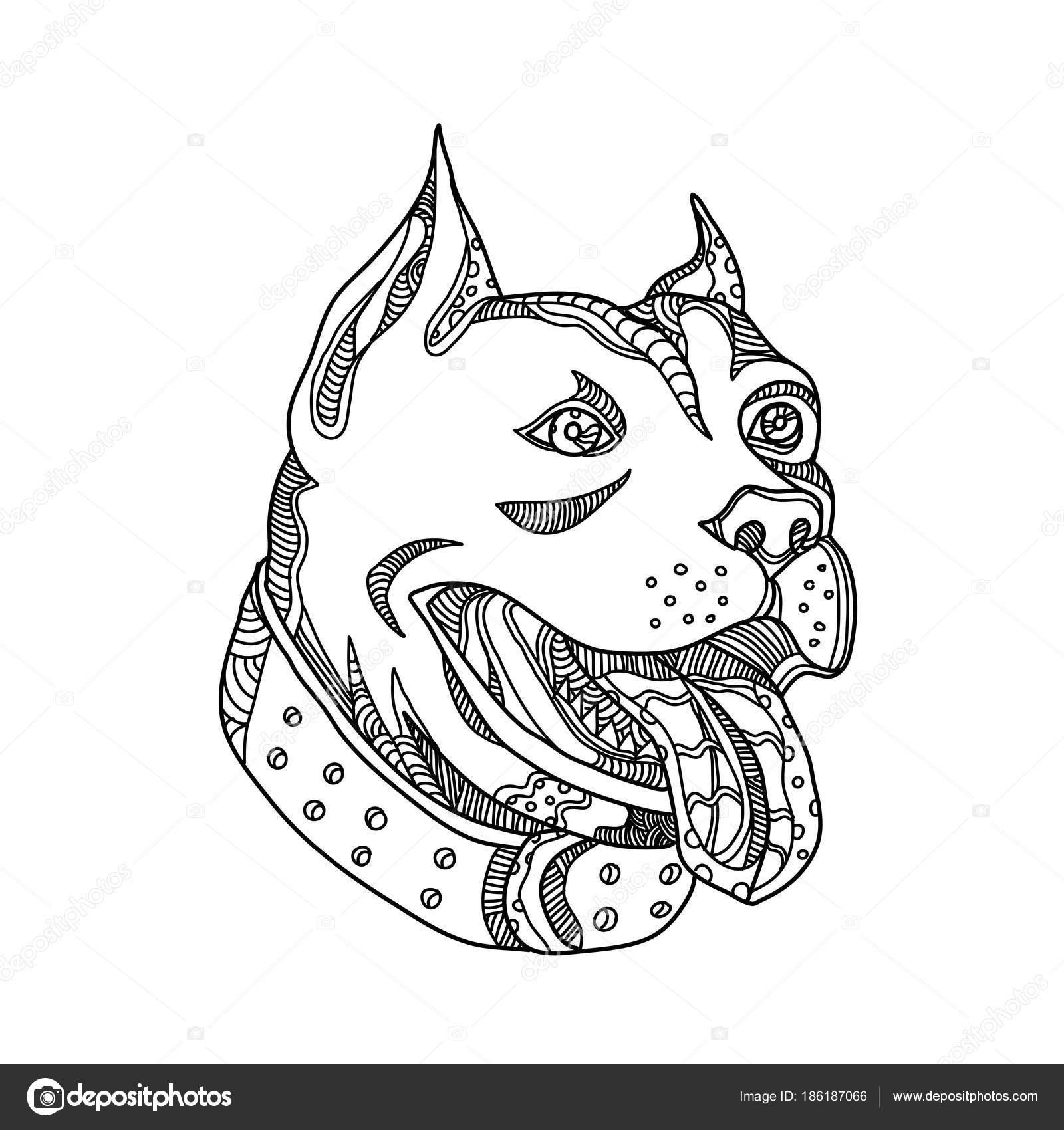 Shelter Dog Harness