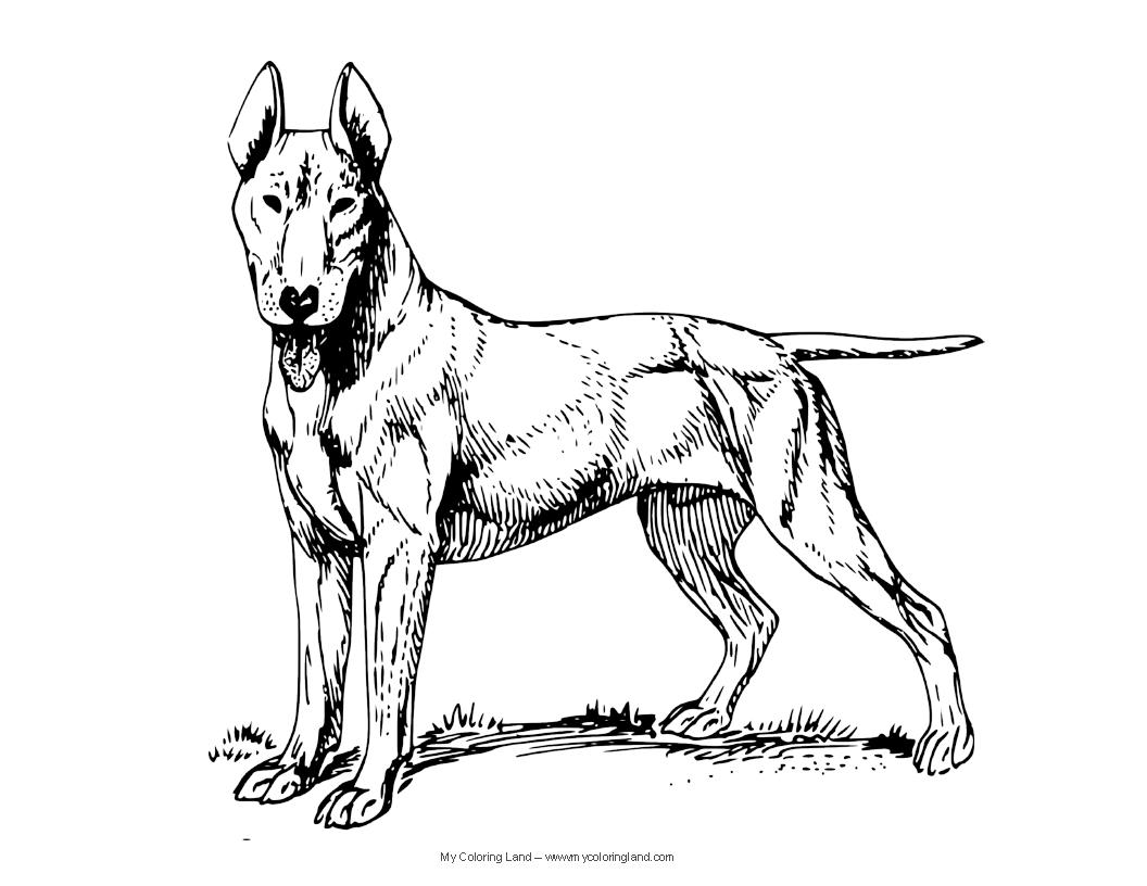 Police Dog Drawing At Getdrawings