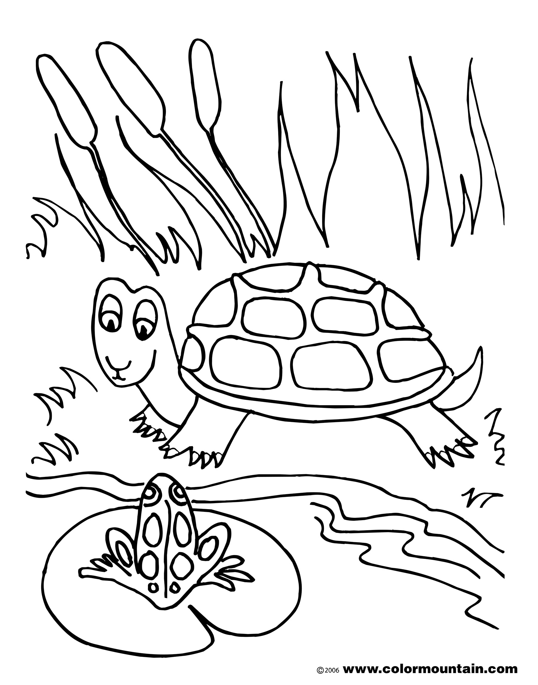 Pond Drawing At Getdrawings