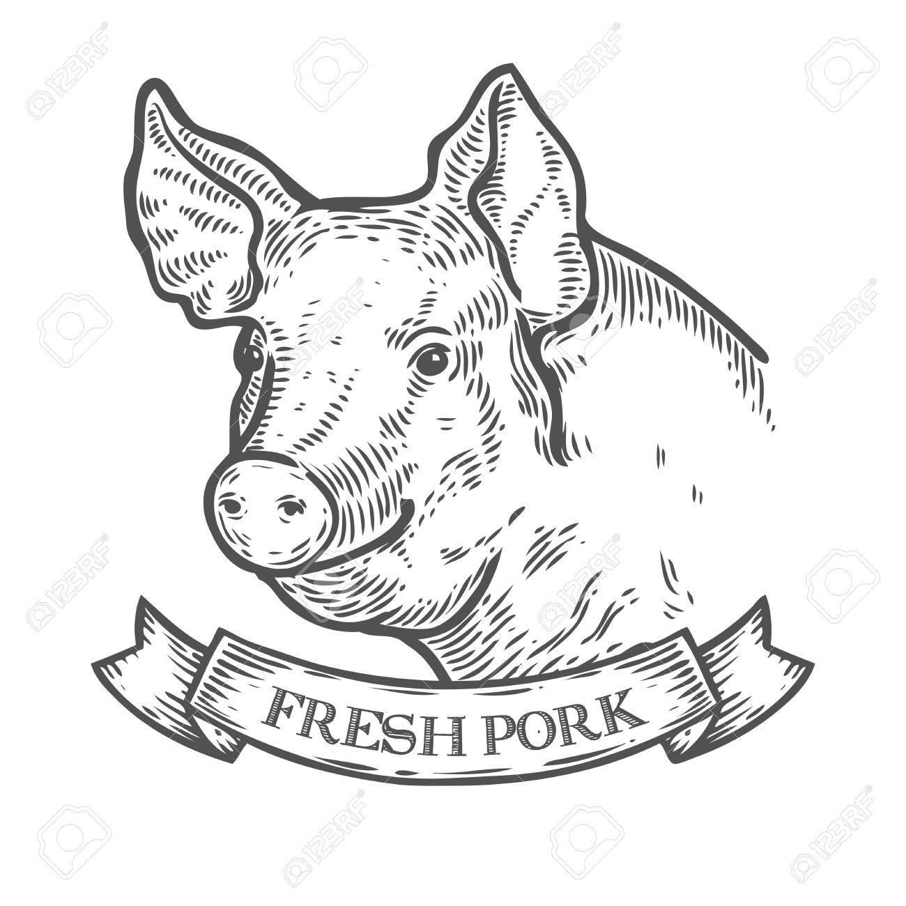 Draw A Pig Bbq