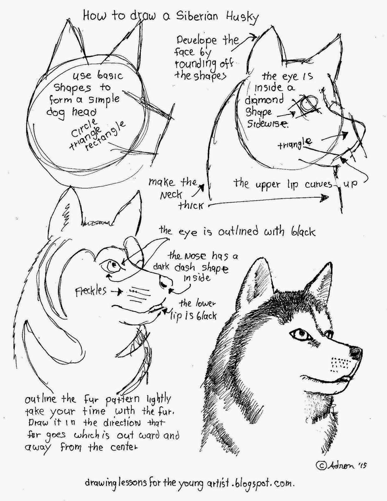 Printable Drawing Worksheets At Getdrawings