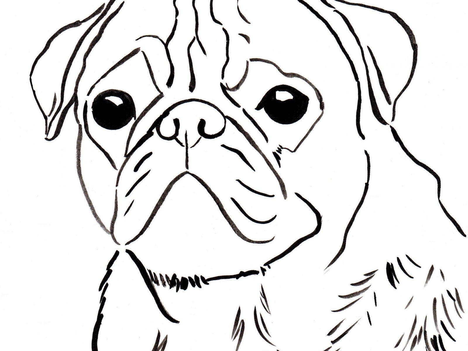 Pug Dog Drawing At Getdrawings