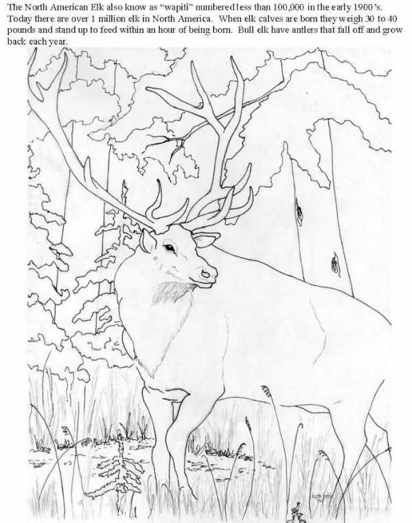 Rocky Mountains Drawing at GetDrawings.com   Free for ...