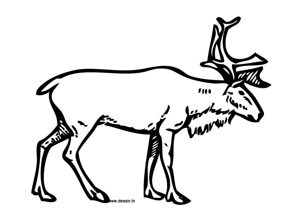 Rudolph The Red Nosed Reindeer Drawing At Getdrawings