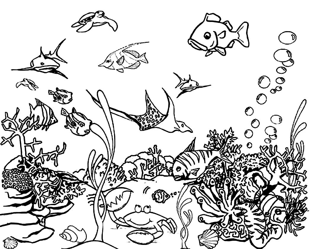 Sea Floor Drawing At Getdrawings