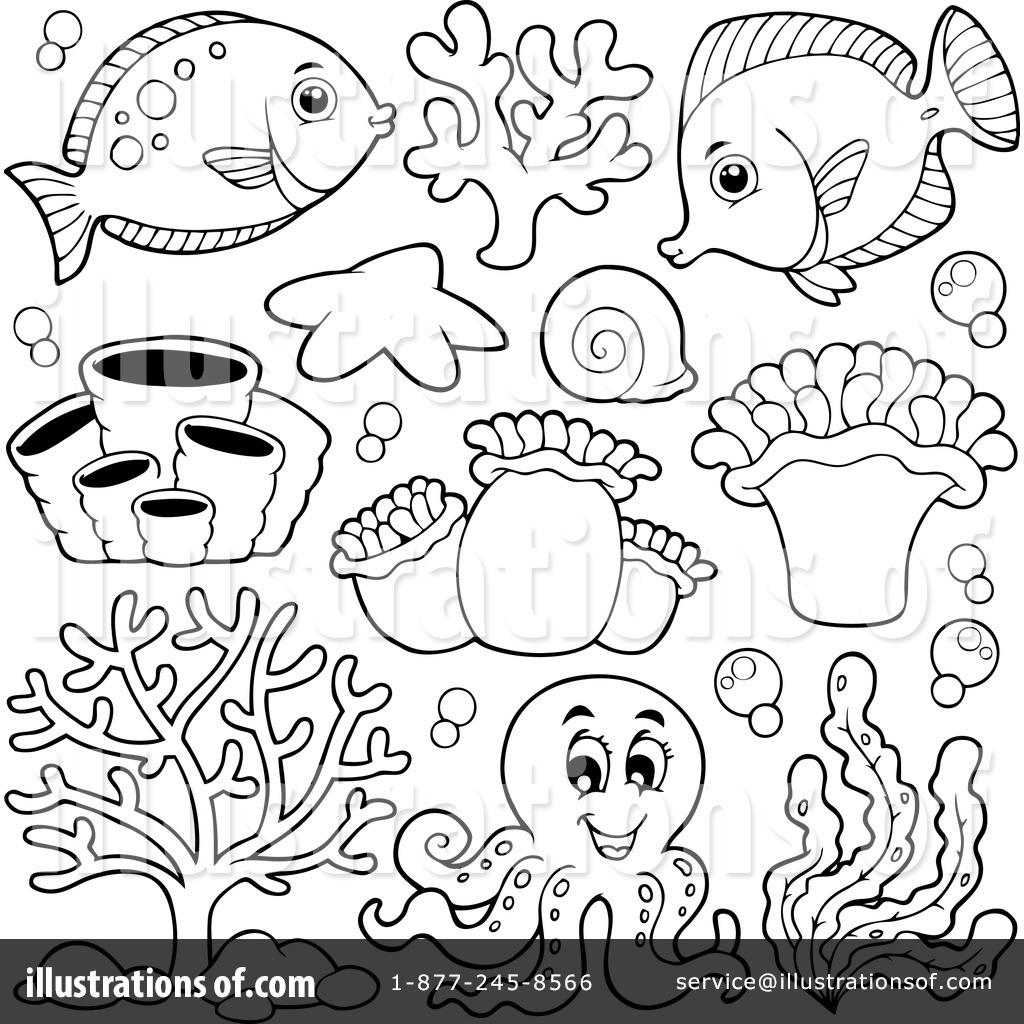 Sea Life Drawing At Getdrawings