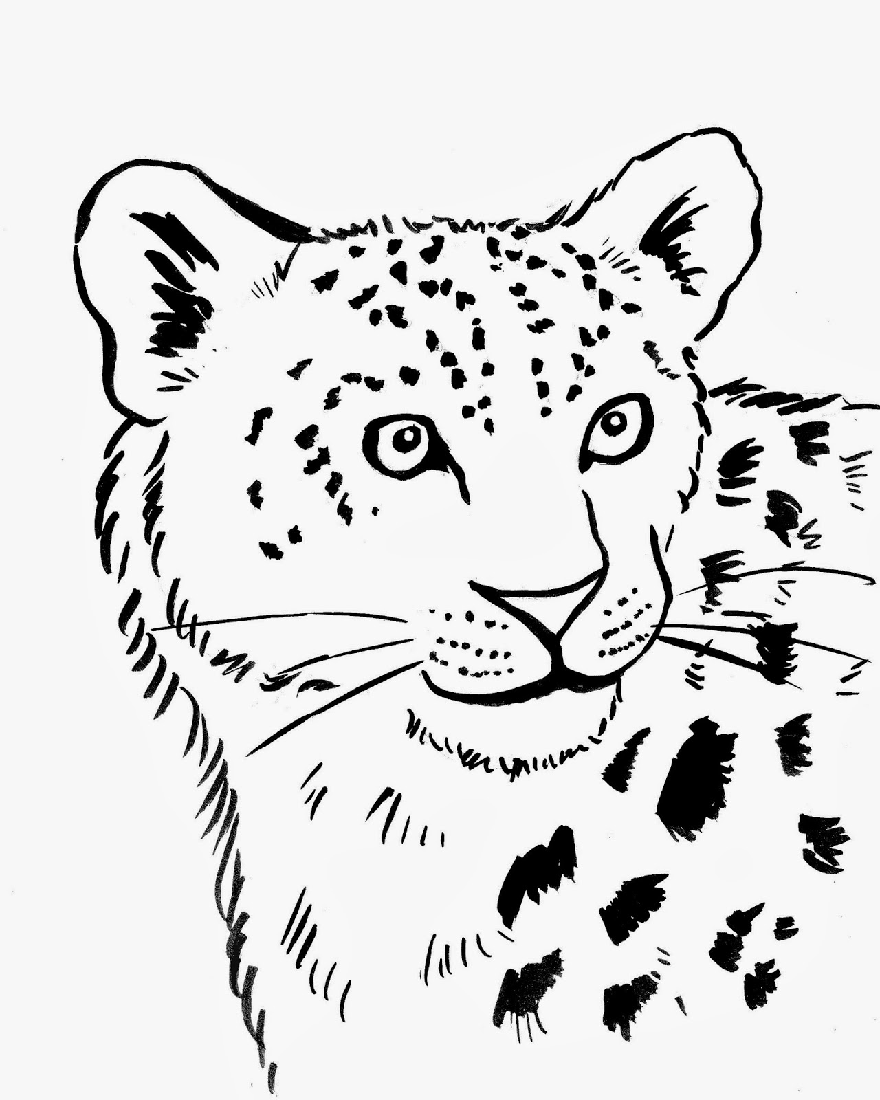 Simple Leopard Drawing At Getdrawings