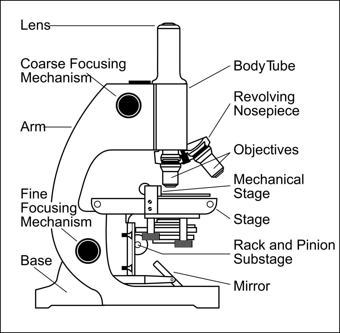 Simple Microscope Drawing At Getdrawings