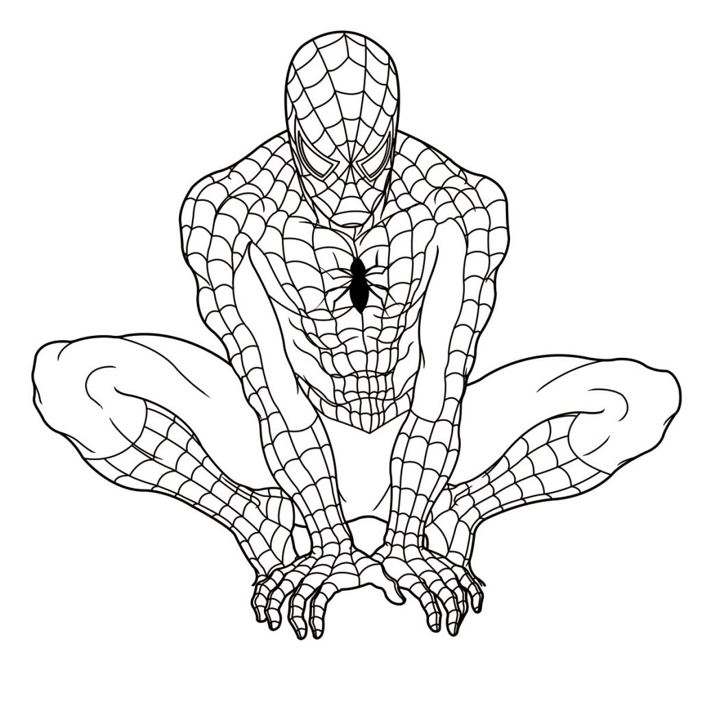 Spider Line Drawing At Getdrawings