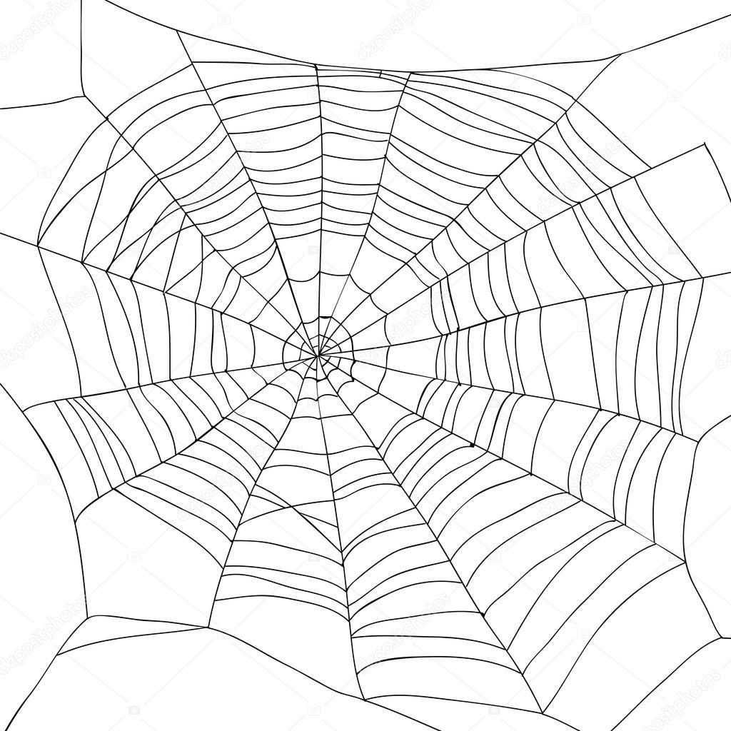 Spider Web Drawing At Getdrawings