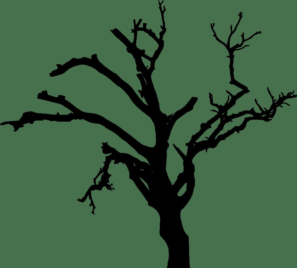Spooky Tree Drawing At Getdrawings