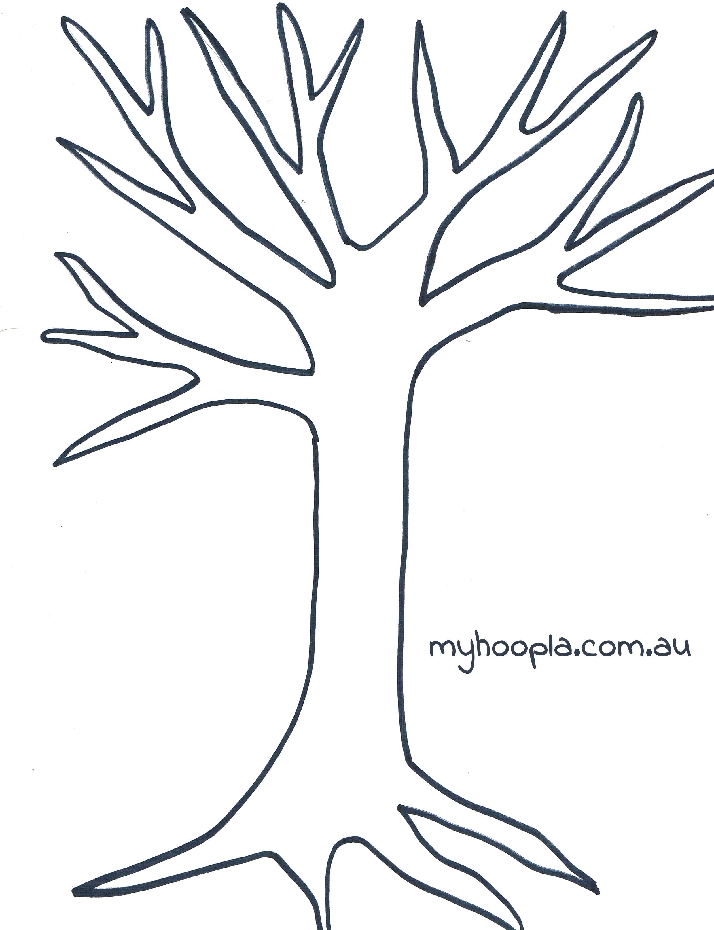 Tree Drawing No Leaves At Getdrawings