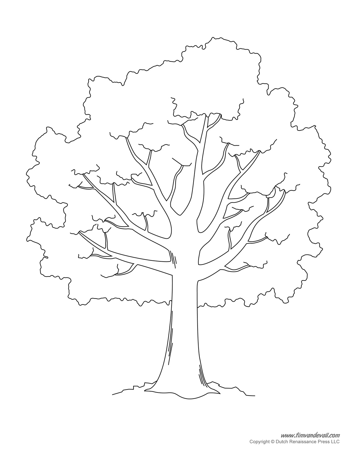 Tree Without Leaves Drawing At Getdrawings