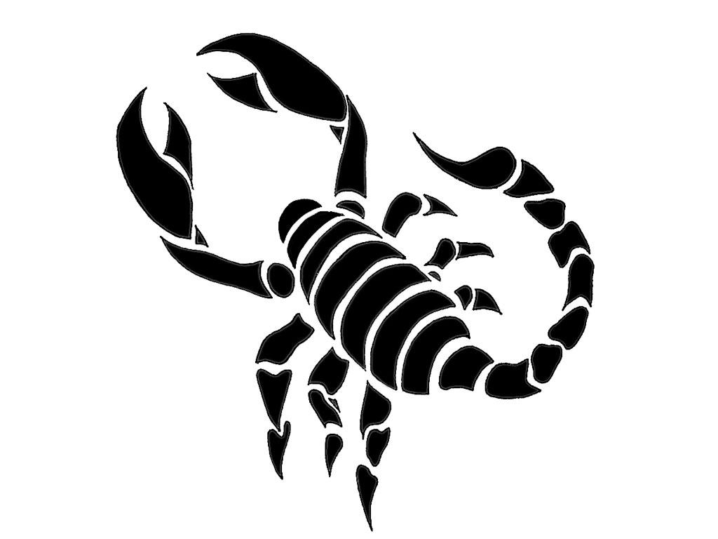 Tribal Scorpion Drawing At Getdrawings