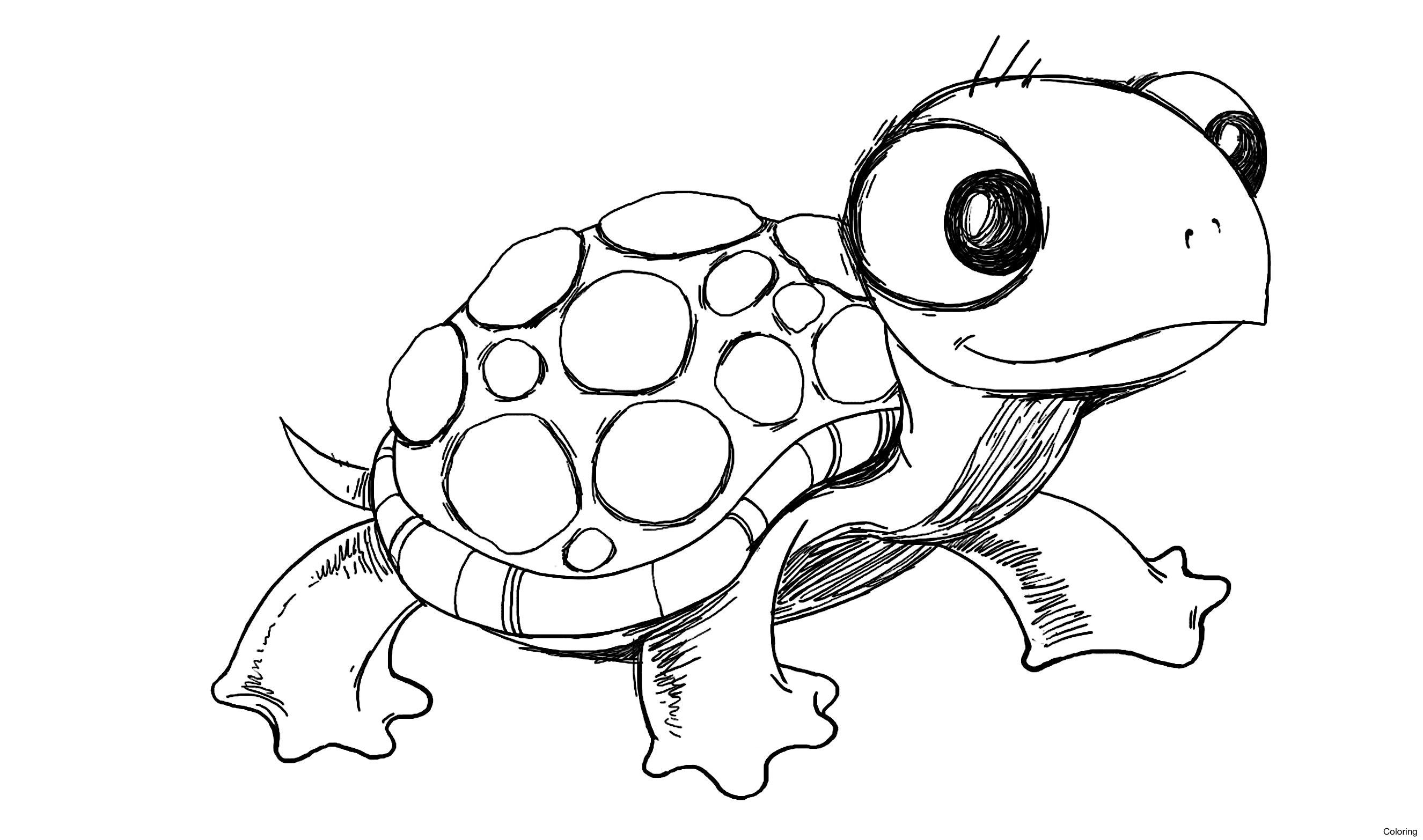 Turtle Drawing Easy At Getdrawings