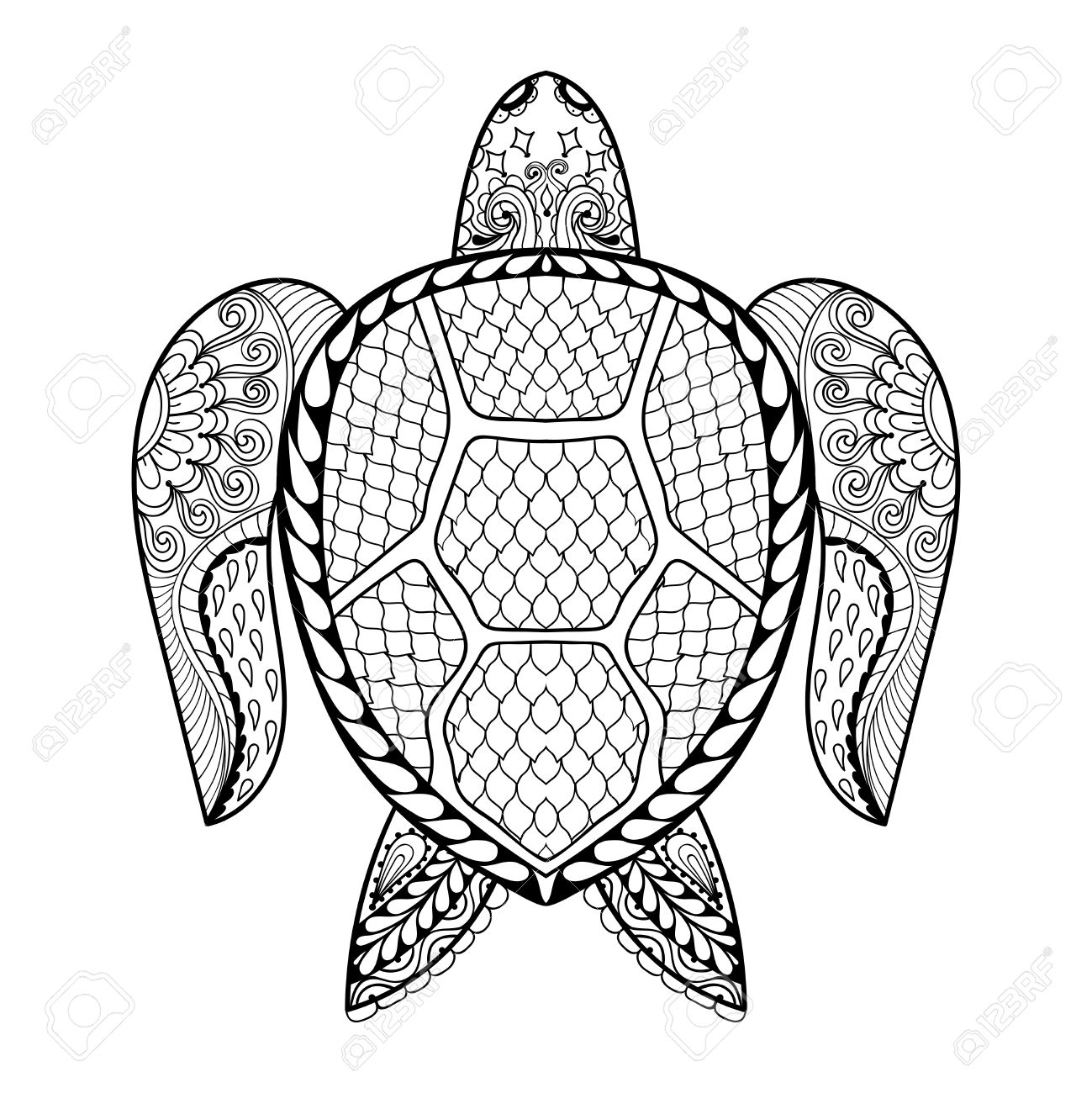 Turtle Line Drawing At Getdrawings
