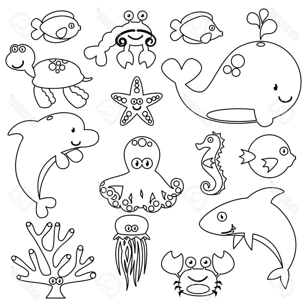 Underwater Animals Drawing At Getdrawings