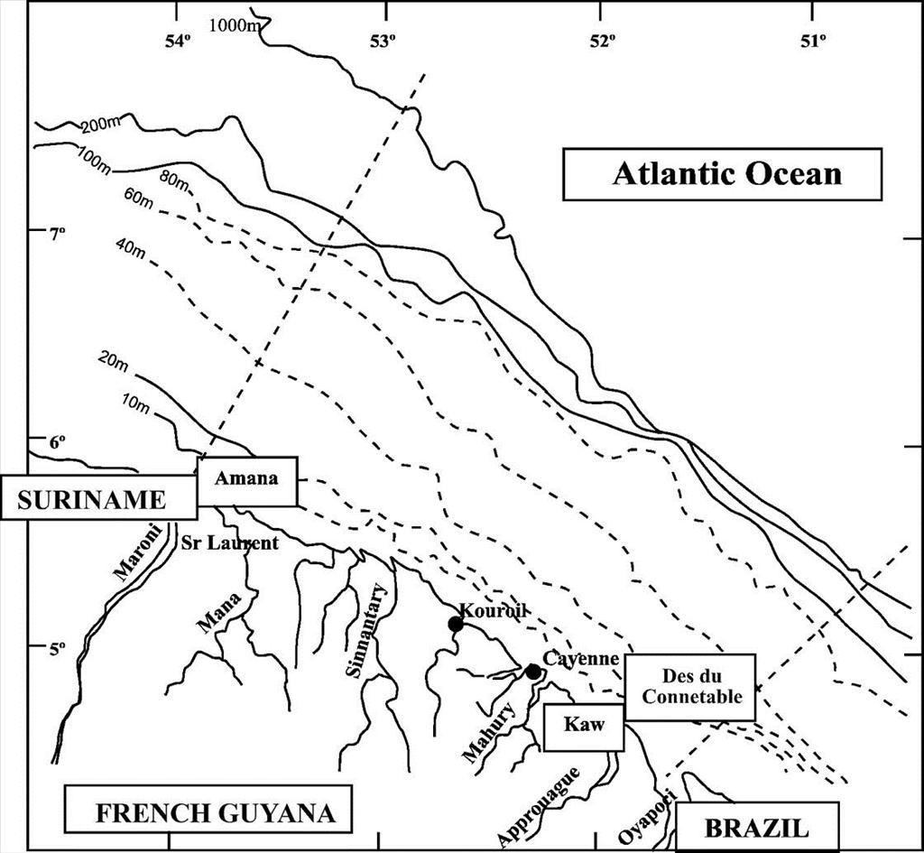 Water Cycle Drawing At Getdrawings