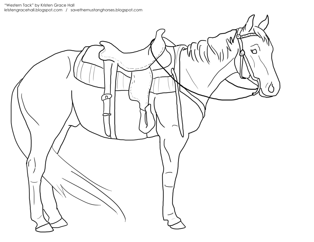 Western Saddle Drawing At Getdrawings
