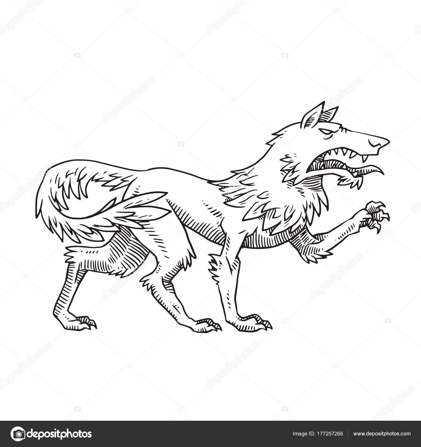The Best Free Growling Drawing Images Download From 125
