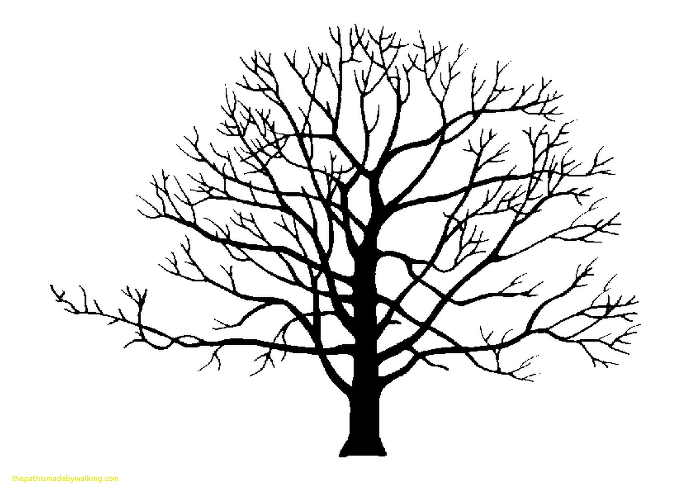 Apple Tree Silhouette At Getdrawings