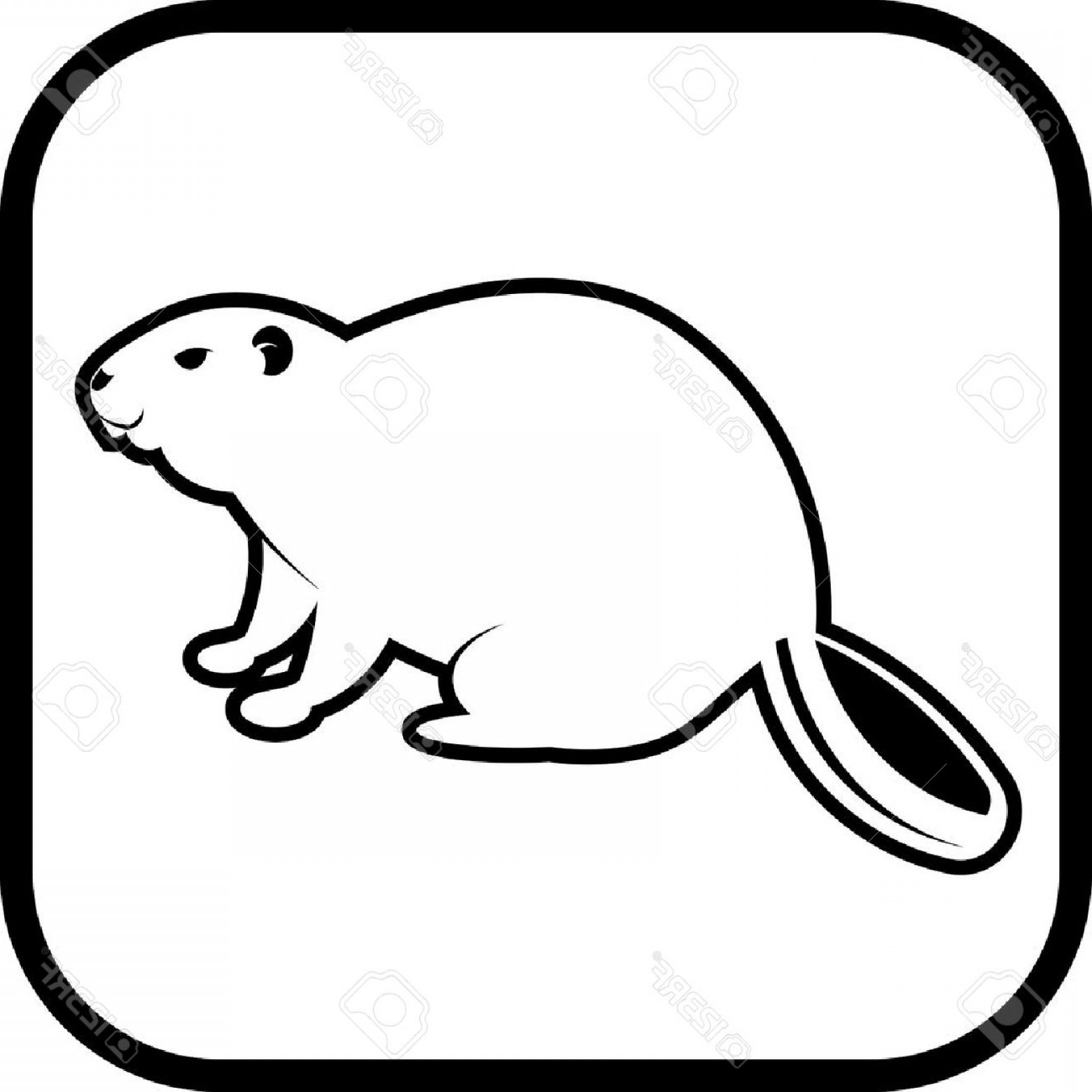 Beaver Drawing Outline At Getdrawings