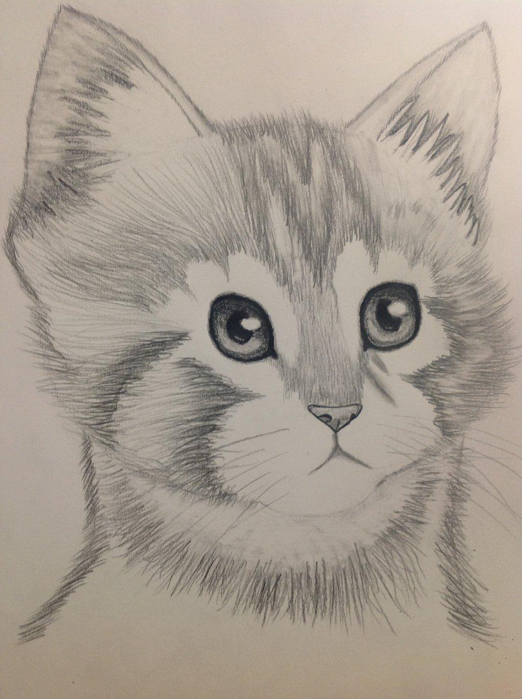 Pencil Shading Drawing Images At Getdrawings