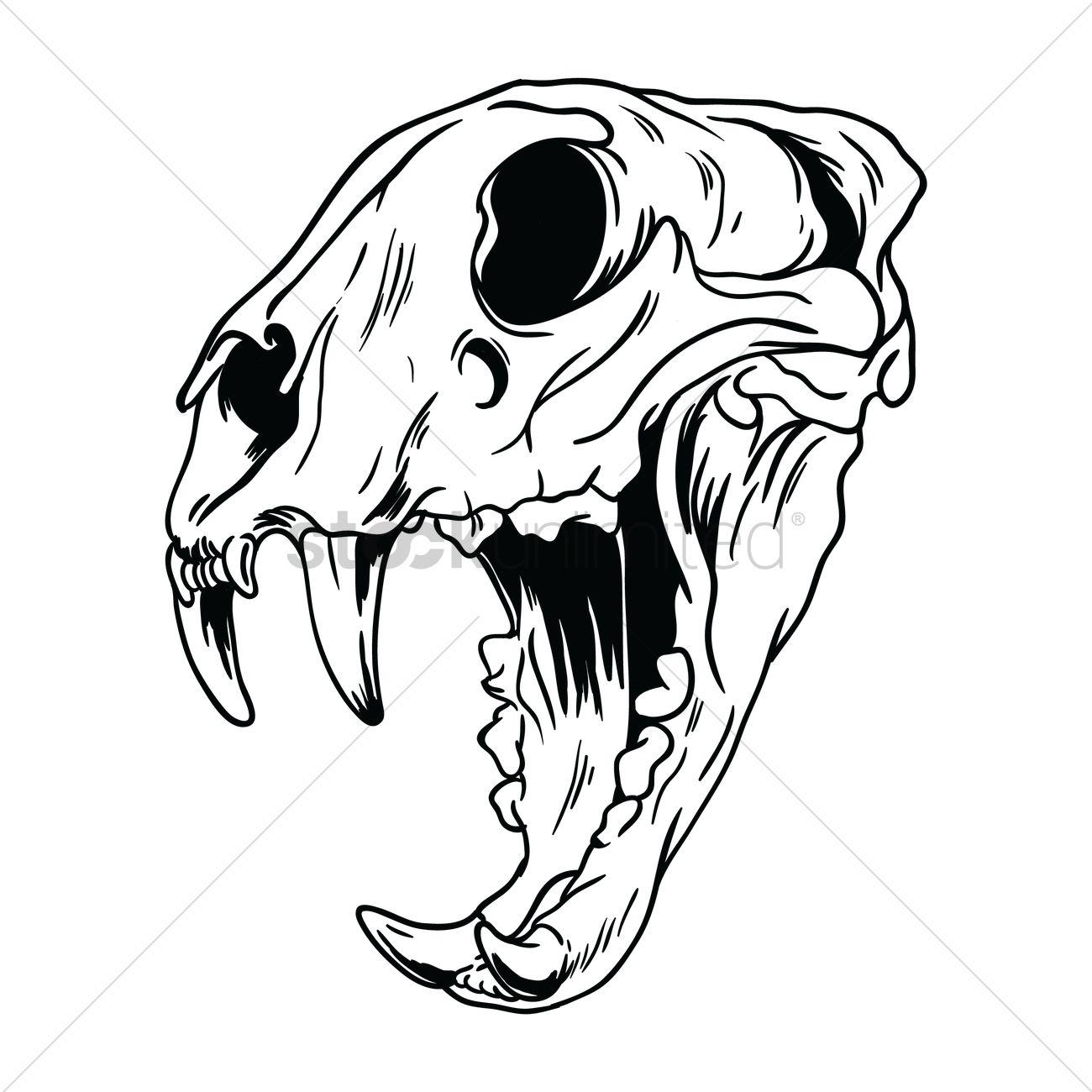 Dog Skull Vector At Getdrawings