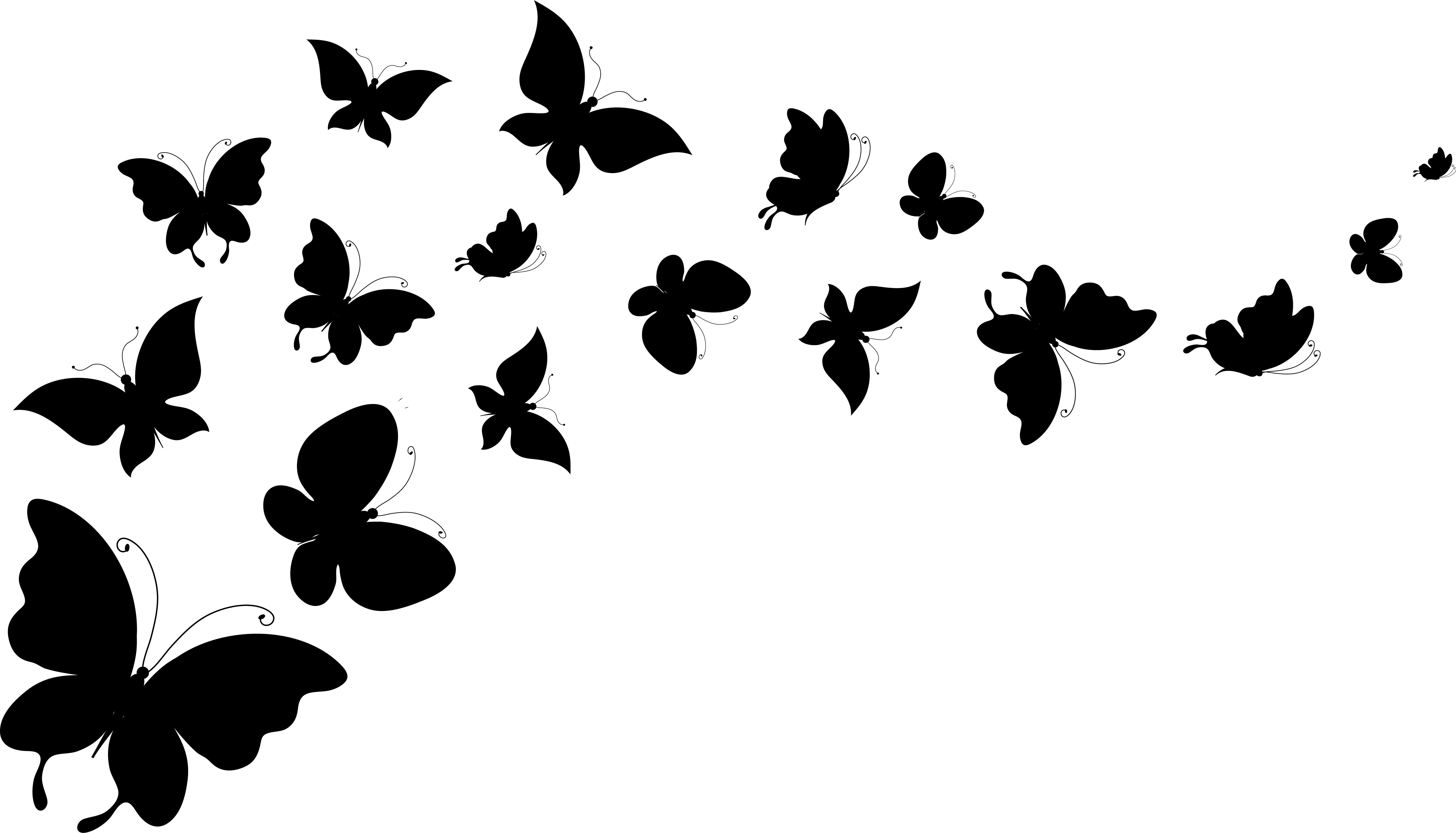 Flying Butterfly Vector At Getdrawings