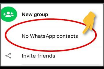 whatsapp contact sync