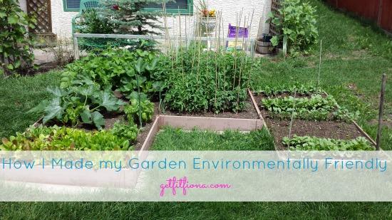 How I Made my Garden Environmentally Friendly