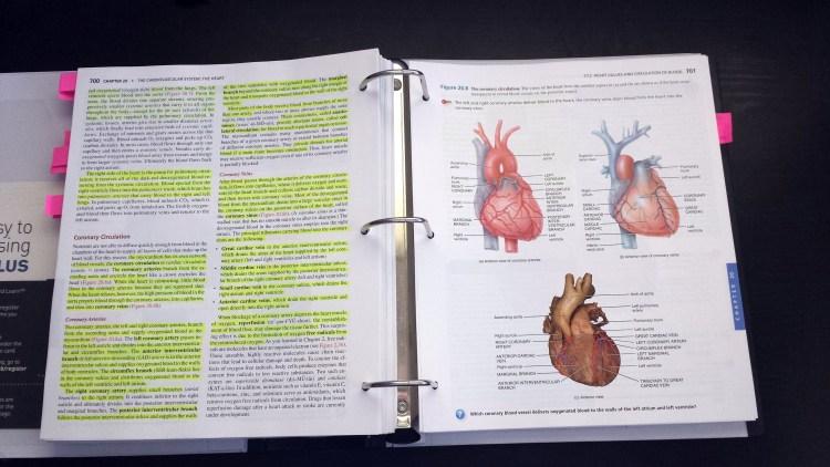 School Testbook