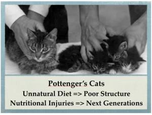 Pottenger's Cats: A Study in Nutrition - Selene River Press