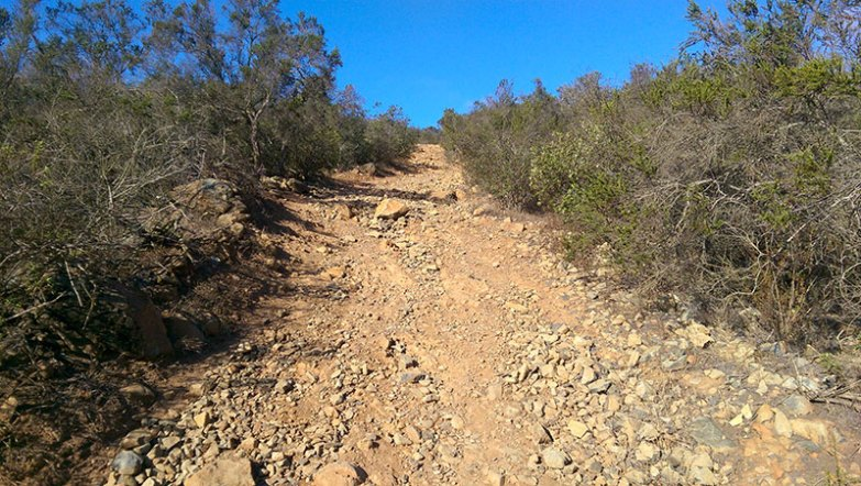 San Diego Hiking: Final Ascent to Black Mountain Summit