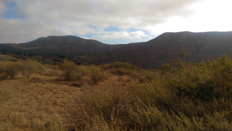 San Diego Hiking: Fortuna Peaks Saddle