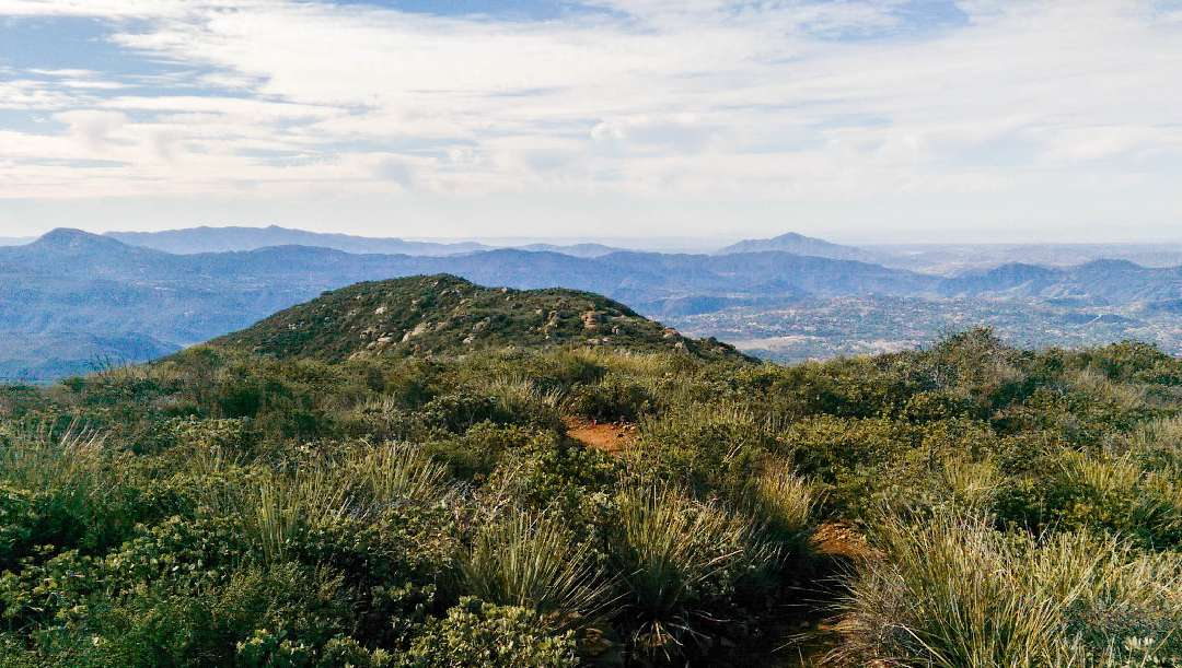 Viejas Mountain Trail Hike