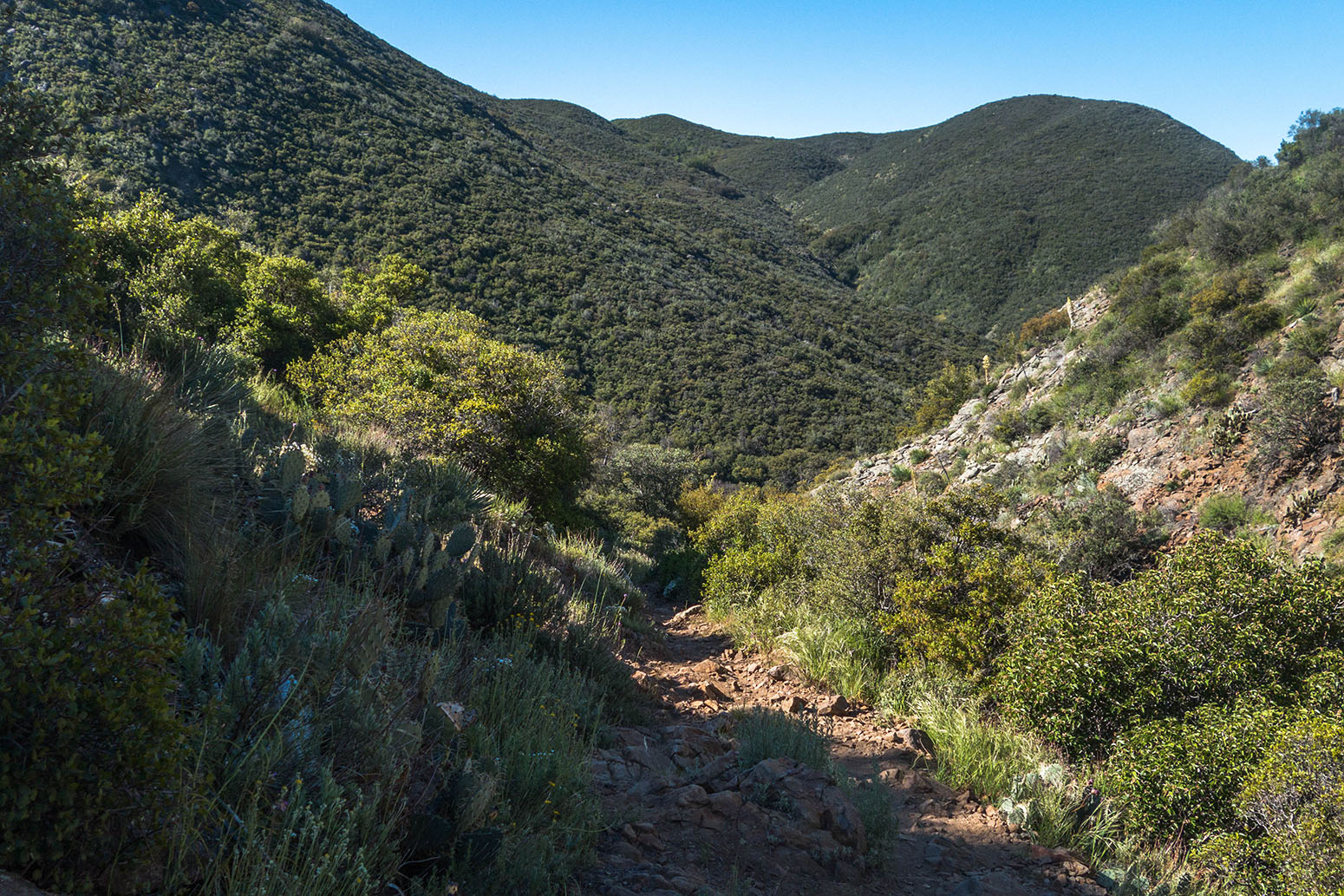 Noble Canyon Hike