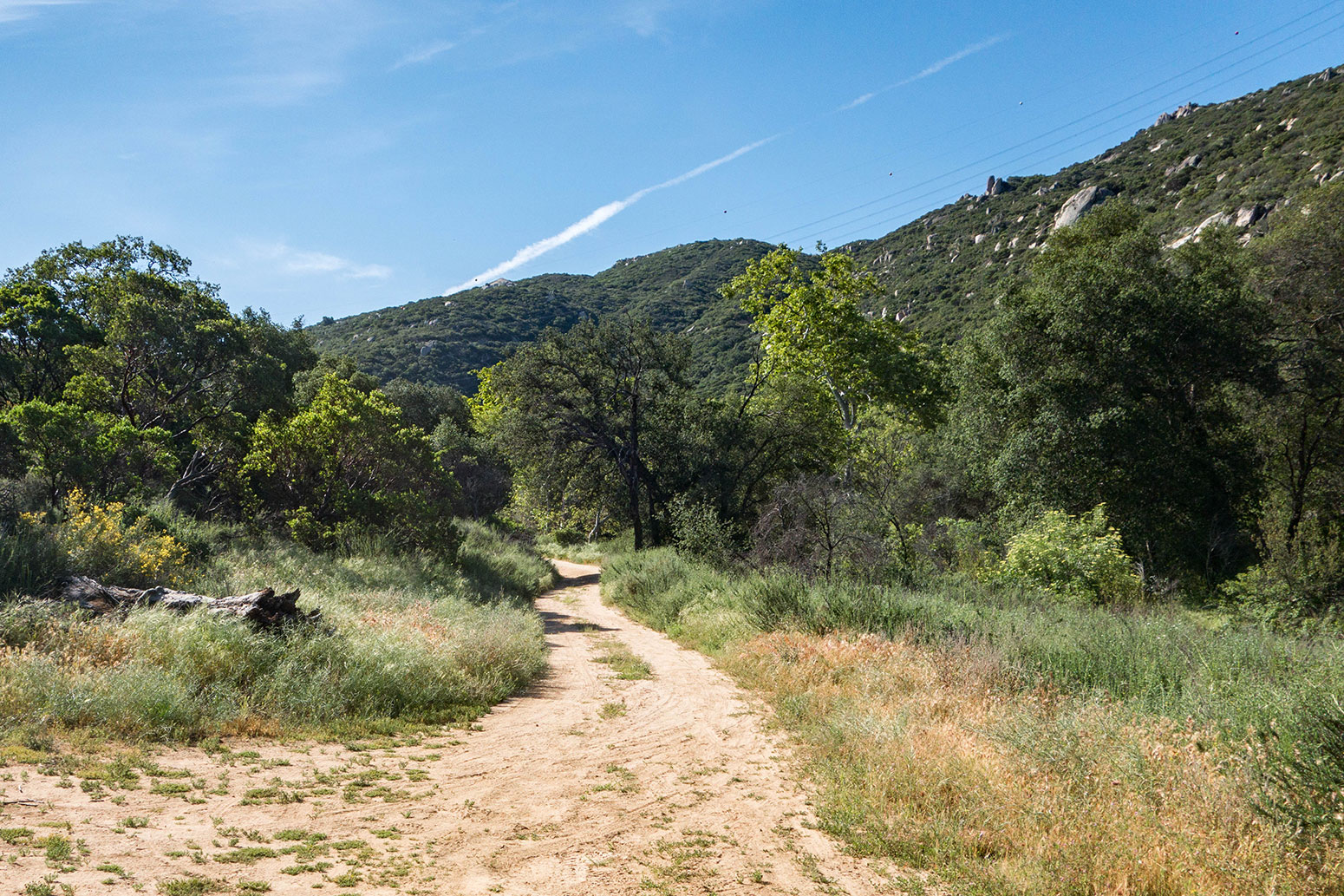 Hauser Canyon Trail Hike
