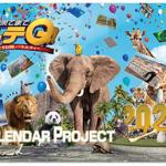 イッテQカレンダー2020予約開始・発売日いつから?どこで買えるのか買い方を紹介