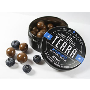 Terra Bites - Blueberries Kiva