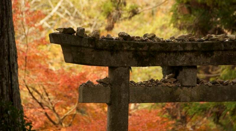 Autumn leaves behind a stone torii gate at Shinomiya Shrine in Momiji-dani on Miyajima in Hiroshima, Japan
