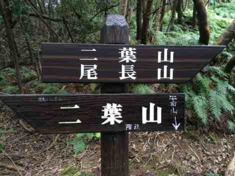 Onaga-yama to Ushita-yama - 04