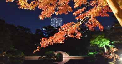 Shukkei-en Garden Autumn Illuminations