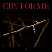 TWICE - CRY FOR ME [FLAC + MP3 320 / WEB] [2020.12.18]